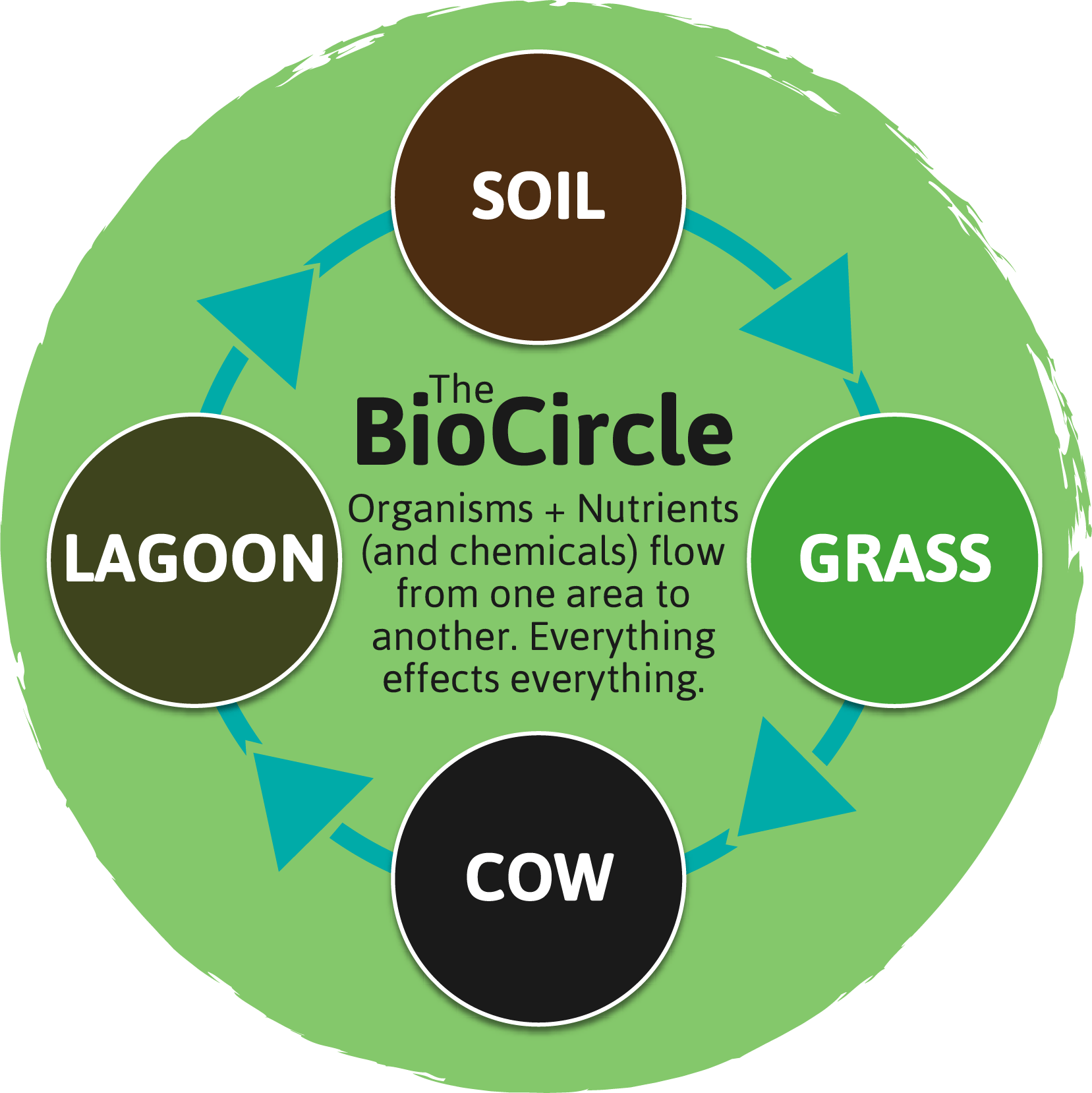 http://www.envirosystems.co.uk/wp-content/uploads/2017/02/biocircle-1.png